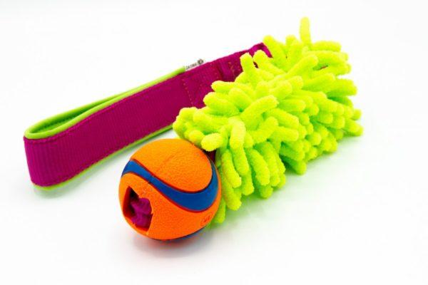 Hundespielzeug ChuckIt Ball mit Mop an Bungee