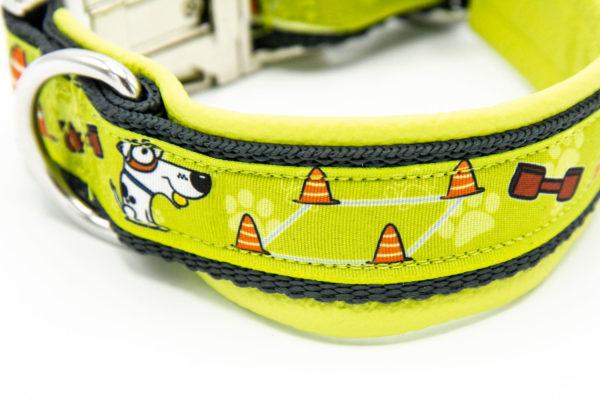 Hundehalsband Hundesport Obedience