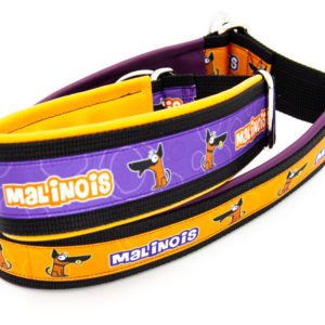 Hundehalsband Malinois
