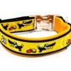dogfrisbee halsband 1
