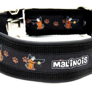 Halsband Malinois