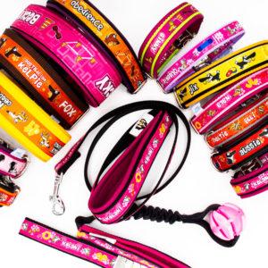 Hundesport Halsbänder