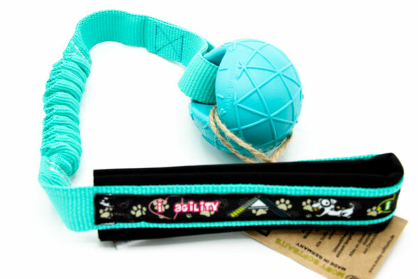 Moby Dog Ball