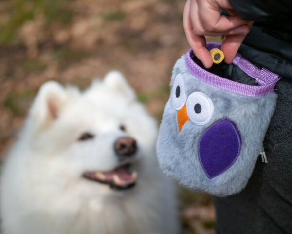 Lavender Owl Baby Dog Treats Pouch