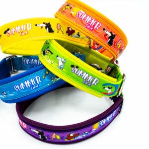 Hundehalsband Summer